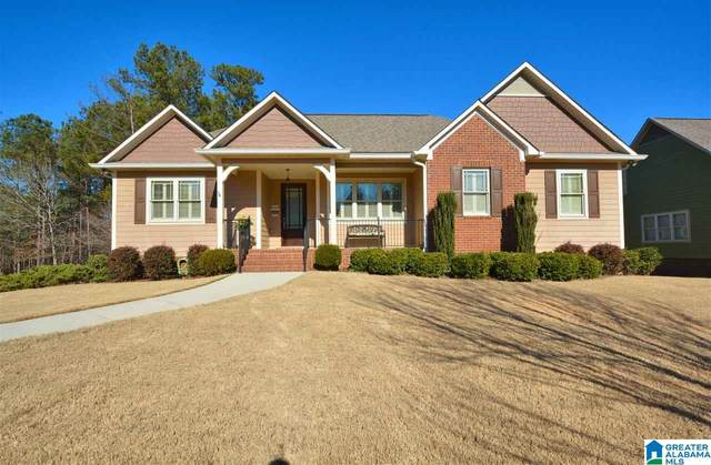 106 Covington Place Dr, Columbiana, AL 35051 (MLS #1273708) :: Bailey Real Estate Group