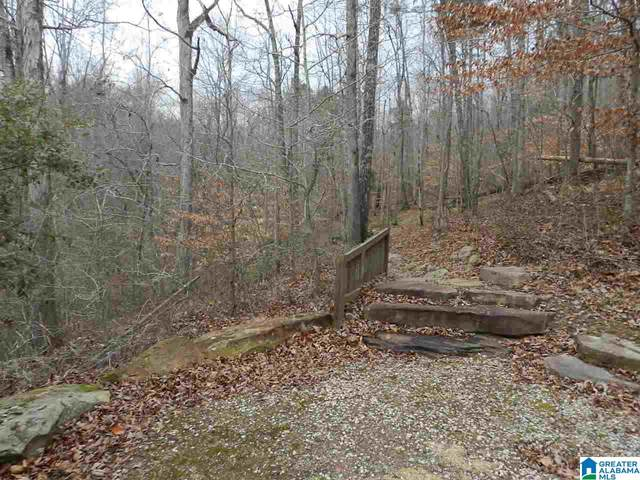 00 Liv Dr 7+/- Acres, Trussville, AL 35173 (MLS #1273746) :: Josh Vernon Group