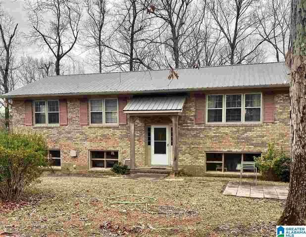 44 Hwy 337, Chelsea, AL 35043 (MLS #1273830) :: Bailey Real Estate Group