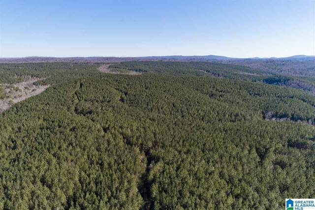 0 Mountain Rd 800Ac, Remlap, AL 35133 (MLS #1273891) :: Bentley Drozdowicz Group