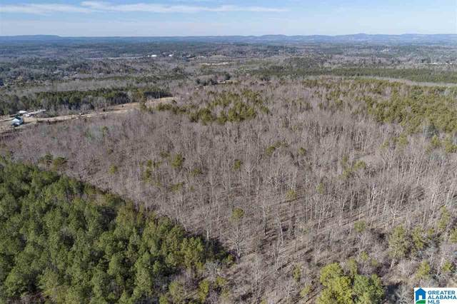0 Mountain Rd 159Acres, Remlap, AL 35133 (MLS #1273895) :: Bentley Drozdowicz Group