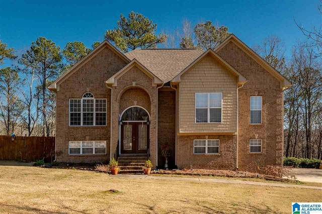 775 Small Lake Dr, Odenville, AL 35120 (MLS #1273956) :: Gusty Gulas Group