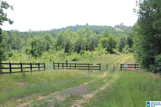 1 Shadow Oaks Way 59.2 Acres, Wilsonville, AL 35147 (MLS #1274163) :: Bentley Drozdowicz Group