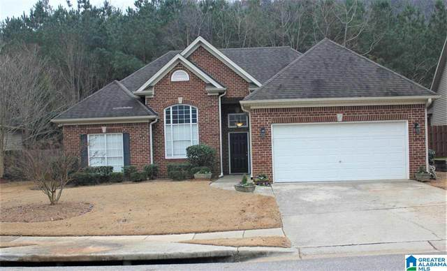 2400 Forest Lakes Ln, Sterrett, AL 35147 (MLS #1274199) :: Josh Vernon Group