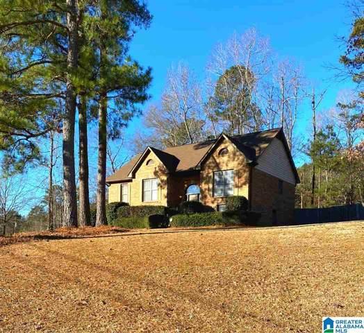 112 Forest Parks Rd, Sterrett, AL 35147 (MLS #1274303) :: Josh Vernon Group