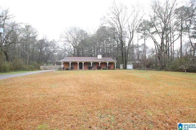 6341 Chelsea Rd, Columbiana, AL 35051 (MLS #1274375) :: Josh Vernon Group