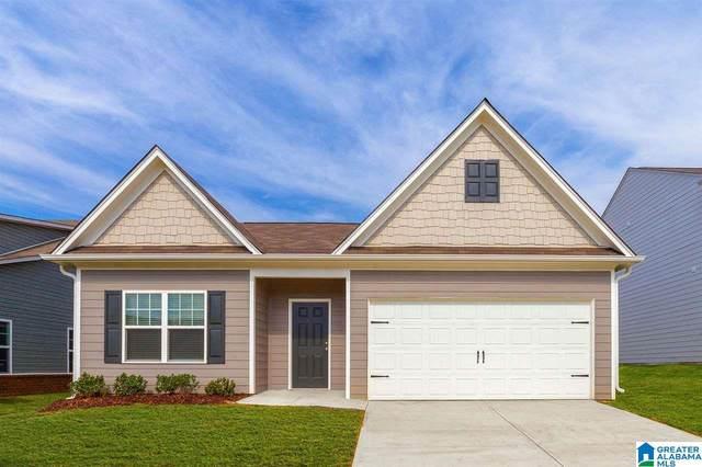 100 Clover Ln, Springville, AL 35146 (MLS #1274391) :: Josh Vernon Group