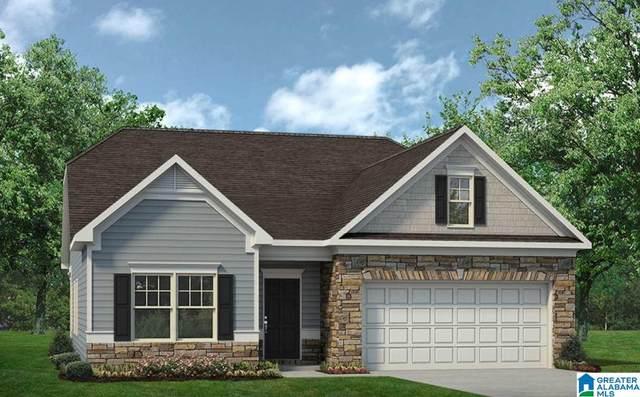 195 Clover Ln, Springville, AL 35146 (MLS #1274453) :: Josh Vernon Group