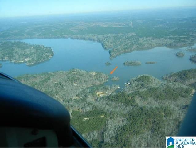 87 Co Rd 121 #0, Rockford, AL 35136 (MLS #1274481) :: JWRE Powered by JPAR Coast & County