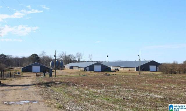 1291 Co Rd 21, Boaz, AL 35957 (MLS #1274607) :: LIST Birmingham