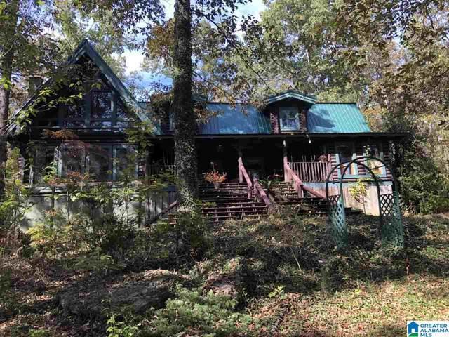 605 Shepherds Rest Ln, Odenville, AL 35120 (MLS #1274627) :: Josh Vernon Group