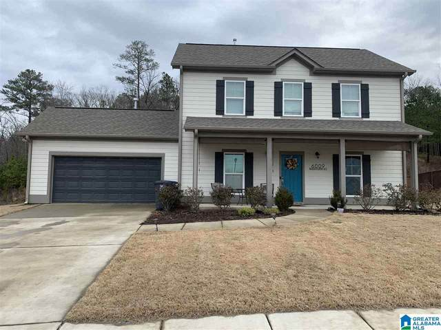 6009 Madison Pl, Helena, AL 35080 (MLS #1274679) :: LocAL Realty