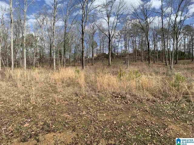 0 Old Centre Hwy #0, Piedmont, AL 36272 (MLS #1274761) :: Bentley Drozdowicz Group