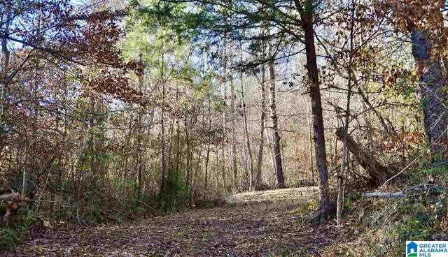00 Co Rd 219 12.52 ACRES, Hanceville, AL 35077 (MLS #1274854) :: Bentley Drozdowicz Group