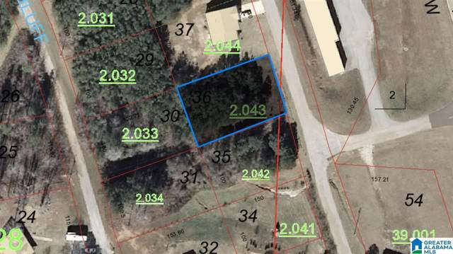 Lot 36 Laurel Dr Lot 36 The Bluf, Wedowee, AL 36278 (MLS #1274922) :: Sargent McDonald Team