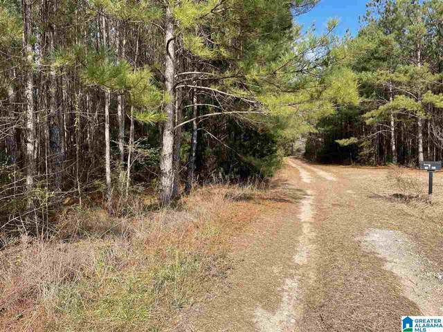 312 Co Rd 234 #1, Thorsby, AL 35171 (MLS #1274931) :: LocAL Realty