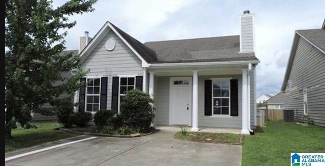 310 Morning Mist Ln, Odenville, AL 35120 (MLS #1275148) :: Bentley Drozdowicz Group