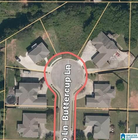 4427 Buttercup Ln #113, Bessemer, AL 35022 (MLS #1275253) :: Gusty Gulas Group