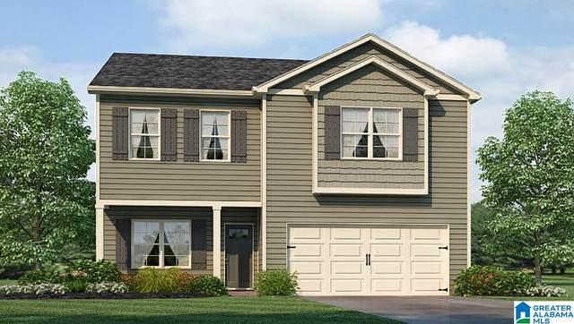1345 Archer's Cove Way, Springville, AL 35146 (MLS #1275744) :: Lux Home Group