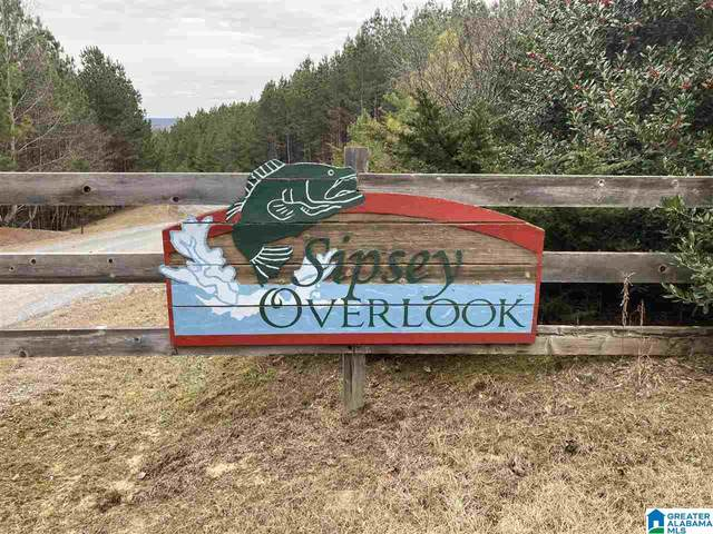 0 Sipsey Overlook Dr 72 & 132, Double Springs, AL 35553 (MLS #1275870) :: Lux Home Group
