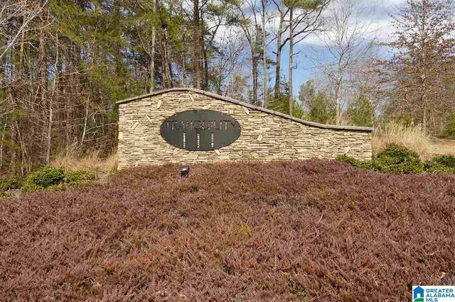 LOT 51 Cerulean Dr #51, Wedowee, AL 36278 (MLS #1275881) :: Lux Home Group