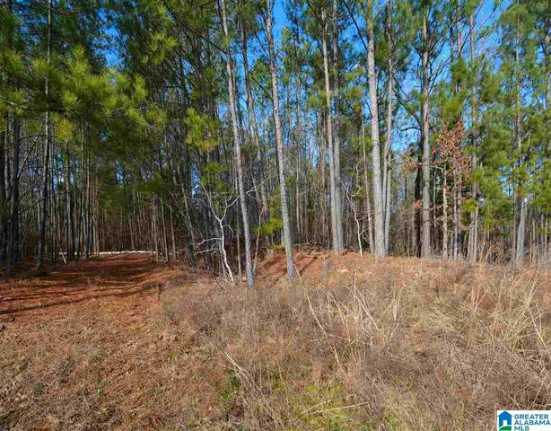 Paradise Point Dr #2, Columbiana, AL 35051 (MLS #1275934) :: Bailey Real Estate Group