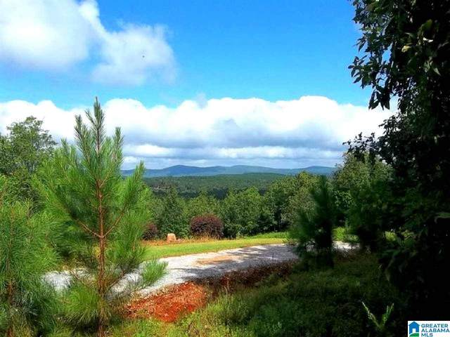 Bowden Ridge Dr 3 Acres, Lineville, AL 36266 (MLS #1276054) :: JWRE Powered by JPAR Coast & County
