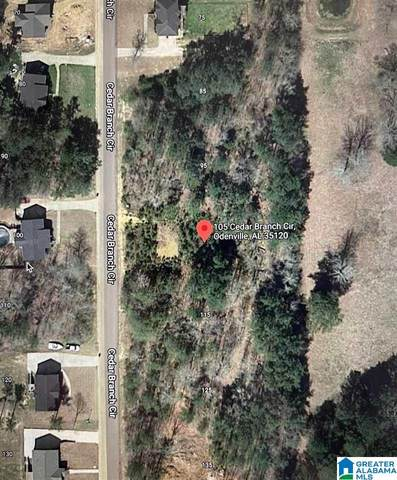 105 Cedar Branch Cir #9, Odenville, AL 35120 (MLS #1276134) :: Lux Home Group