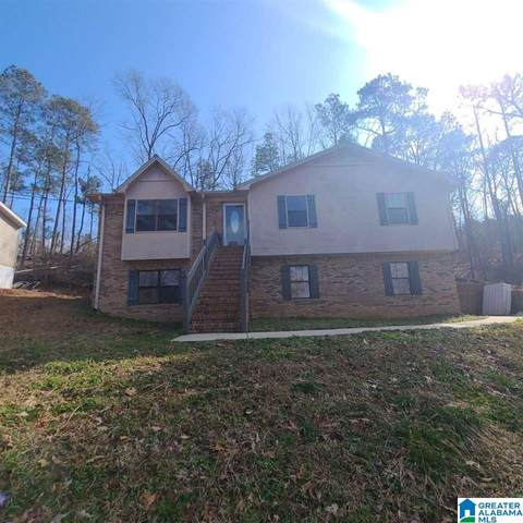 1915 Rabbit Branch Road, Cropwell, AL 35054 (MLS #1276258) :: Sargent McDonald Team