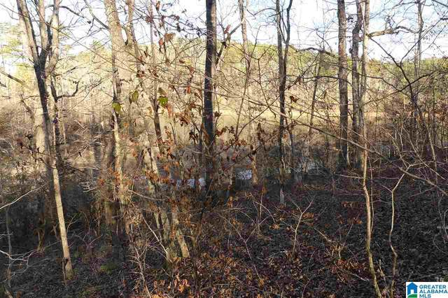 Lot 9 Lost Creek Cove Rd #9, Wedowee, AL 36278 (MLS #1276282) :: Bentley Drozdowicz Group