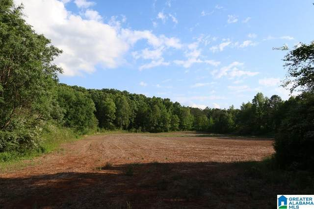 Ragans Ln 83 Acres, Sycamore, AL 35149 (MLS #1276381) :: Lux Home Group