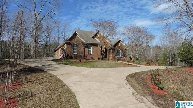 51 Bowden Cir, Chelsea, AL 35043 (MLS #1276388) :: Lux Home Group