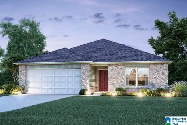 257 Camden Park Ave, Calera, AL 35040 (MLS #1276399) :: Lux Home Group