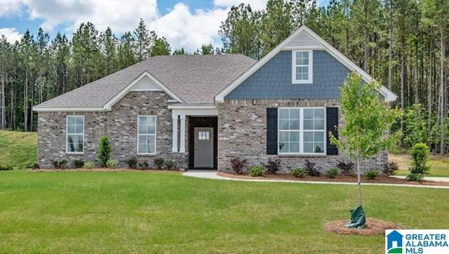 316 Rock Terrace Dr, Helena, AL 35080 (MLS #1276469) :: LIST Birmingham