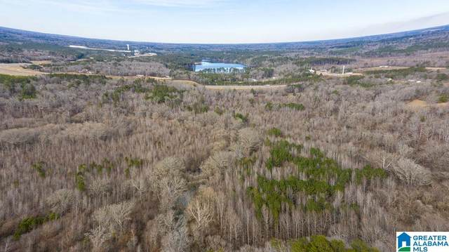 5964-C Whitehouse Rd #21.45, Jasper, AL 35501 (MLS #1276545) :: Bentley Drozdowicz Group