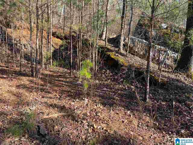 0 Crestview Rd 81,82,83, Odenville, AL 35120 (MLS #1276658) :: LocAL Realty