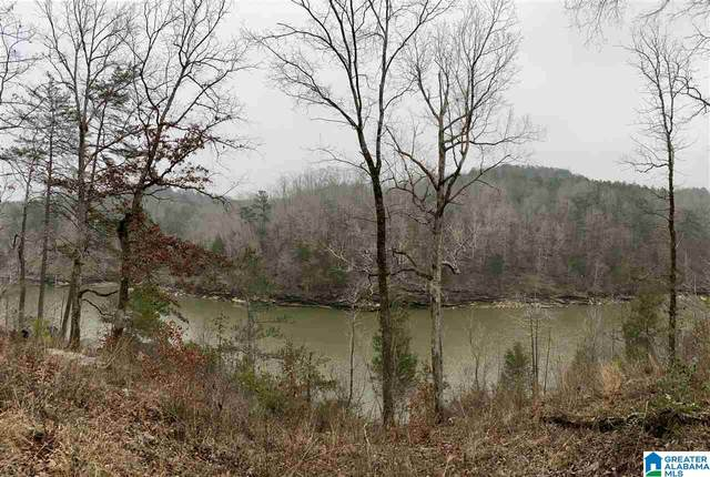 1262 Co Rd 3782 #0, Arley, AL 35541 (MLS #1276744) :: Howard Whatley