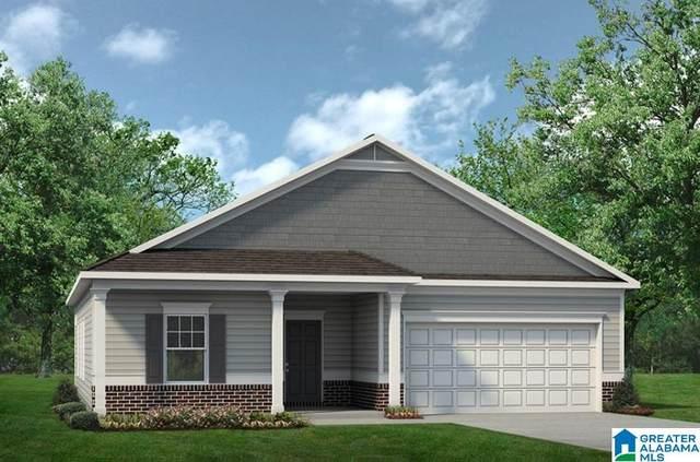 230 Clover Ln, Springville, AL 35146 (MLS #1276836) :: Lux Home Group