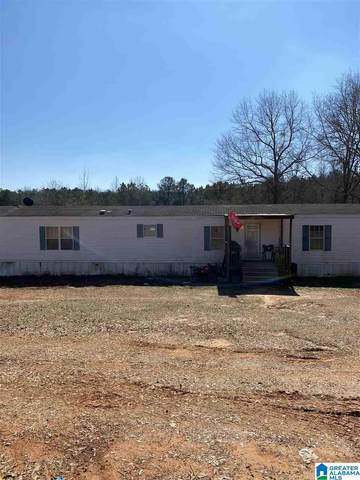 12269 Deer Chase Rd, Mccalla, AL 35111 (MLS #1276973) :: Gusty Gulas Group