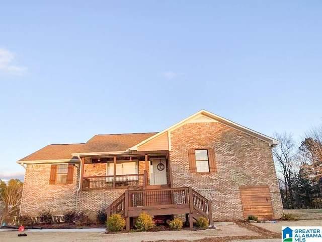 6901 Castle Heights Rd, Morris, AL 35116 (MLS #1277022) :: Josh Vernon Group