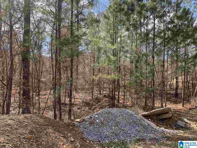 129 Bolivar Cir, Chelsea, AL 35043 (MLS #1277040) :: Gusty Gulas Group