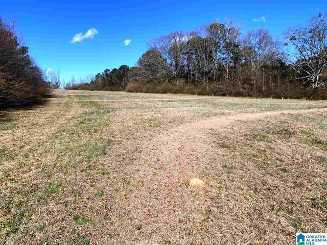 41977 Hwy 77 48 Acres, Ashland, AL 36251 (MLS #1277130) :: Josh Vernon Group