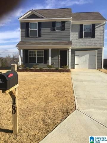 160 Smith Glen Dr, Springville, AL 35146 (MLS #1277264) :: Lux Home Group