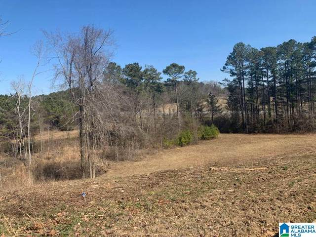 0 Hwy 75 #1, Oneonta, AL 35121 (MLS #1277296) :: Howard Whatley