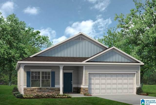 225 Clover Ln, Springville, AL 35146 (MLS #1277315) :: Lux Home Group