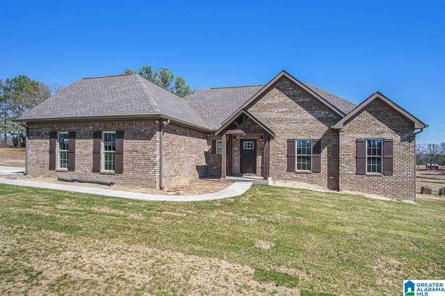10 Co Rd 862, Clanton, AL 35045 (MLS #1277358) :: Josh Vernon Group