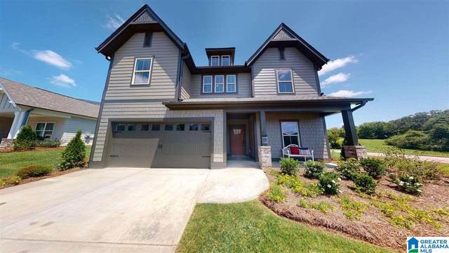 10 Macdonald Cove, Springville, AL 35146 (MLS #1277386) :: Josh Vernon Group