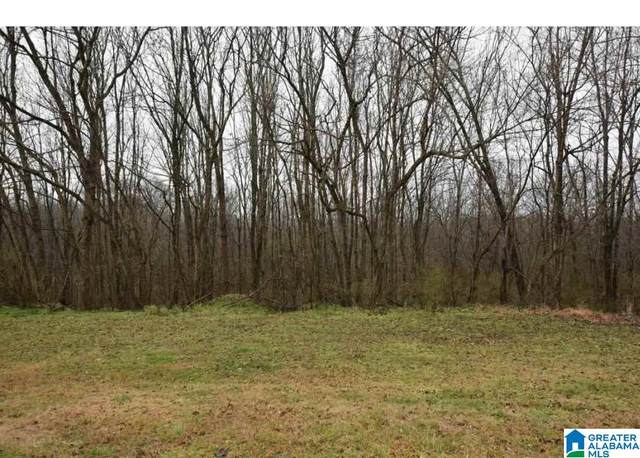0 Hwy 31 S #1, Hanceville, AL 35057 (MLS #1277485) :: Bentley Drozdowicz Group