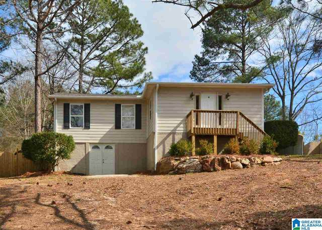 31 Little Creek Cir, Chelsea, AL 35043 (MLS #1277486) :: Lux Home Group