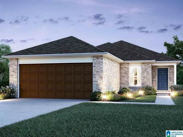 219 Hidden Trace Ct, Montevallo, AL 35115 (MLS #1277508) :: Bailey Real Estate Group